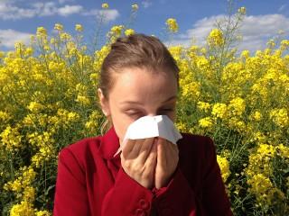 alergias estacionales, consejos, infografia alergias estacionales, farmananos